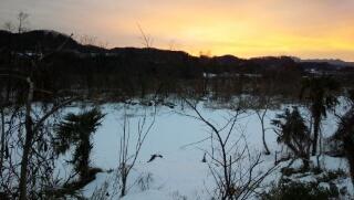 雪の多摩川を望む