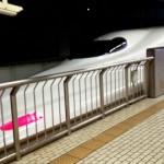 愛犬と新幹線で帰省する