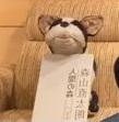 エール→スタパ→プレシャスライブからの~インスタライブvol.3